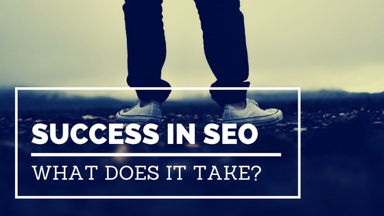 What does it take to become a successful SEO Professional?