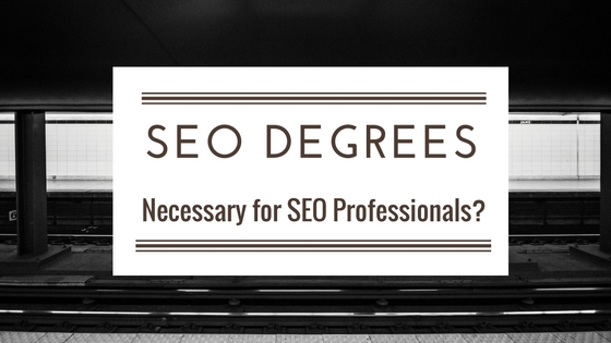 Is the education necessary for an SEO professional